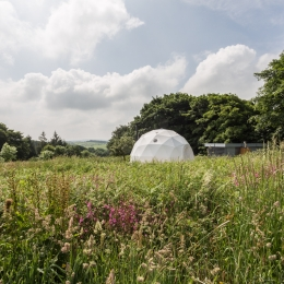 Eyl glamping geodome flowers